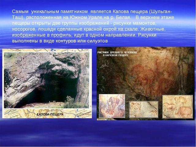 Самым уникальным памятником является Капова пещера (Шульган-Таш), расположенн...
