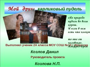 Мой друг: карликовый пудель Выполнил ученик 2А класса МОУ СОШ №10 г.Иркутска