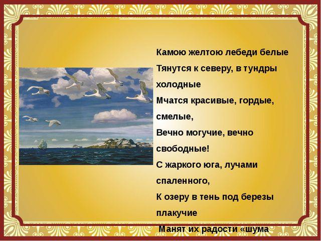 Камою желтою лебеди белые Тянутся к северу, в тундры холодные Мчатся красивые...