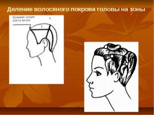 Деление волосяного покрова головы на зоны