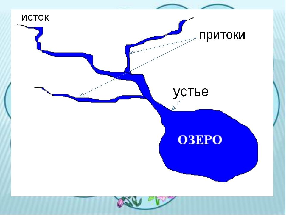исток устье притоки