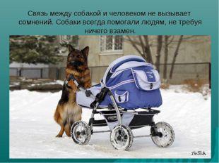 Связь между собакой и человеком не вызывает сомнений. Собаки всегда помогали