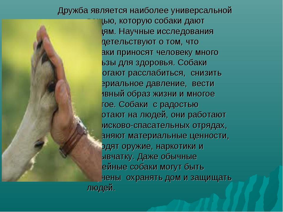 Дружба является наиболее универсальной вещью, которую собаки дают людям. Нау...
