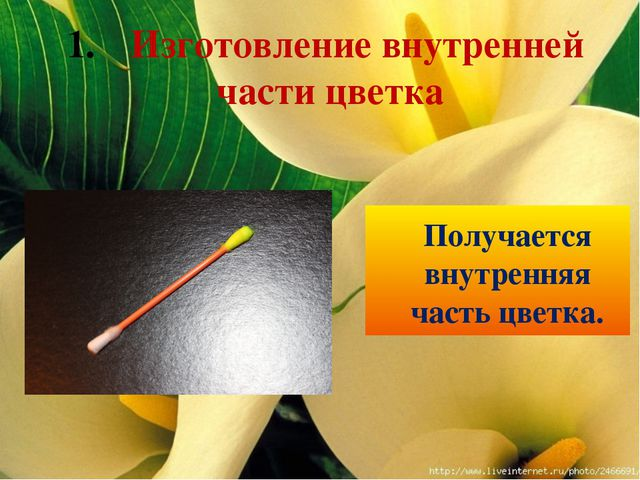 Получается внутренняя часть цветка. Изготовление внутренней части цветка