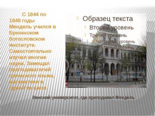 Венский университет, где преподавал Мендель С 1844 по 1848 годы Мендель уч