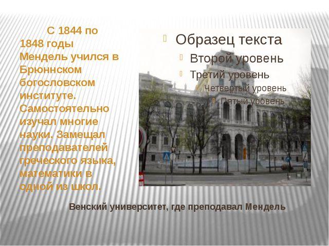 Венский университет, где преподавал Мендель С 1844 по 1848 годы Мендель уч...