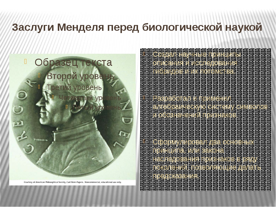 Заслуги Менделя перед биологической наукой Создал научные принципы описания и...
