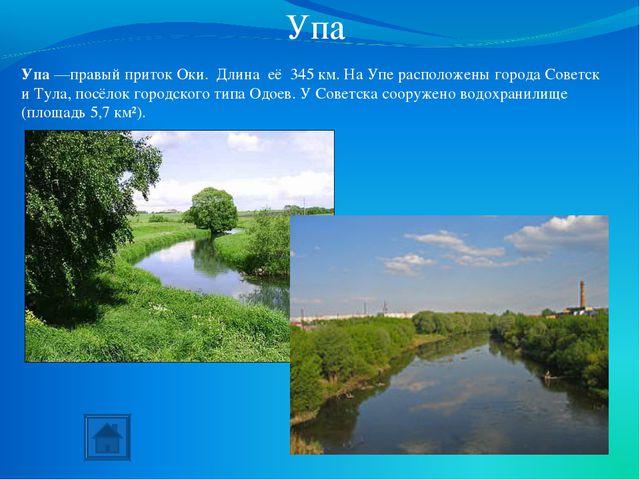 Упа Упа—правый приток Оки. Длина её 345км. На Упе расположены города Советс...