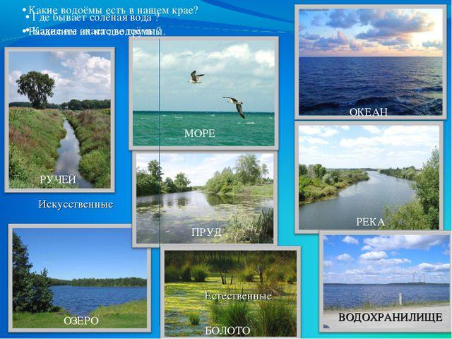 Где бывает солёная вода ? Какие вы знаете водоёмы? ОКЕАН МОРЕ РЕКА ОЗЕРО ПРУ...
