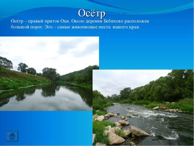 Осётр Осётр – правый приток Оки. Около деревни Бебихово расположен большой по...
