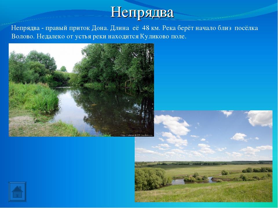 Непрядва Непрядва - правый приток Дона. Длина её 48км. Река берёт начало бли...
