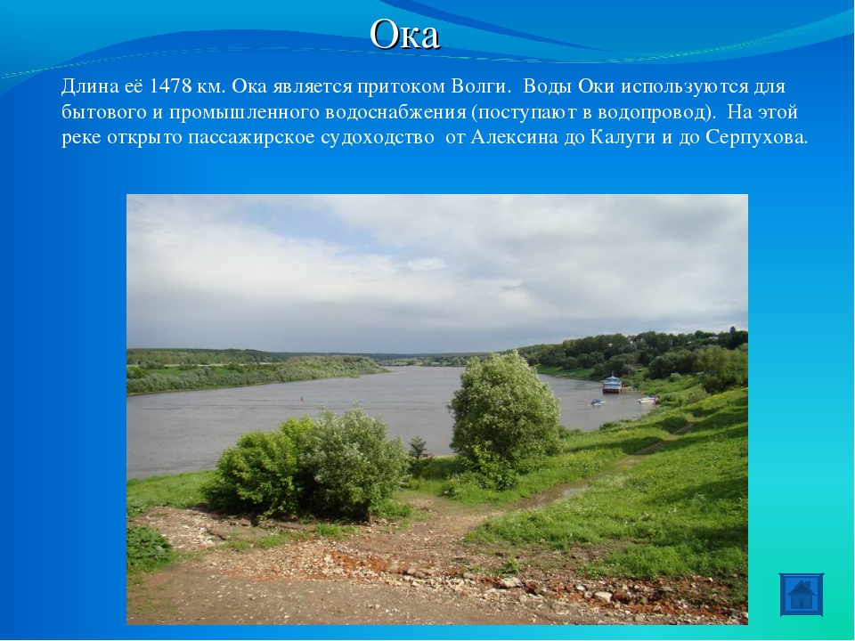 Ока Длина её 1478 км. Ока является притоком Волги. Воды Оки используются для...