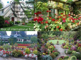 Riot of international flora
