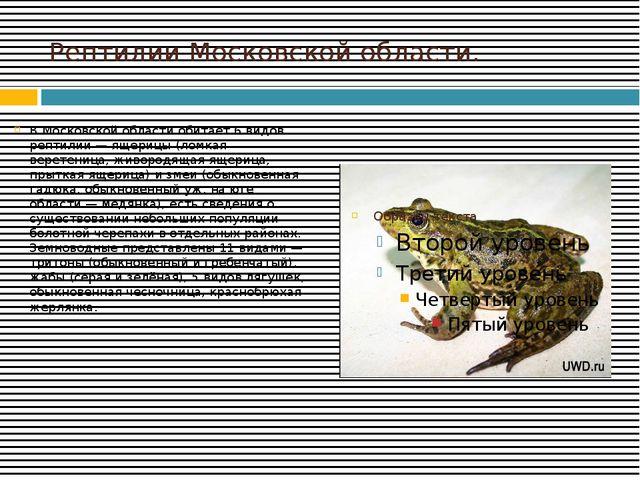 Рептилии Московской области. В Московской области обитает 6 видов рептилий —...