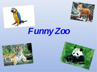 Funny Zoo