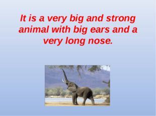 It is a very big and strong animal with big ears and a very long nose.