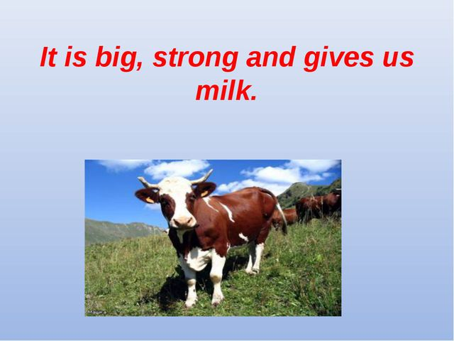 It is big, strong and gives us milk.