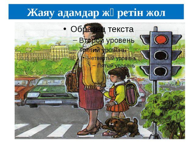 Жаяу адамдар жүретін жол