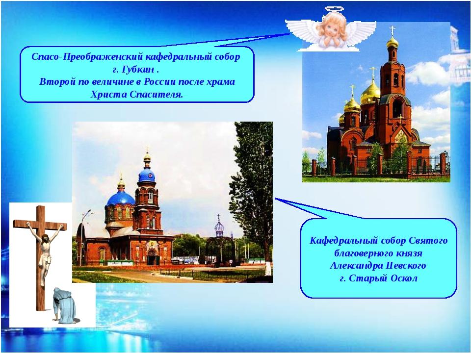 Кафедральный собор Святого благоверного князя Александра Невского г. Старый О...