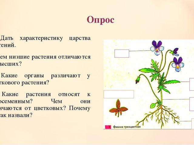 Опрос 1. Дать характеристику царства растений. 2. Чем низшие растения отличаю...
