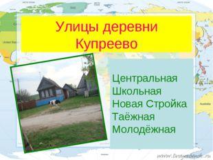 Улицы деревни Купреево Центральная Школьная Новая Стройка Таёжная Молодёжная