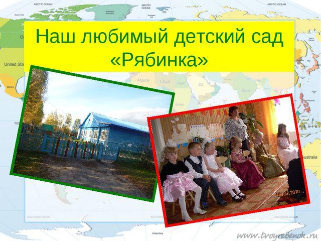 Наш любимый детский сад «Рябинка»