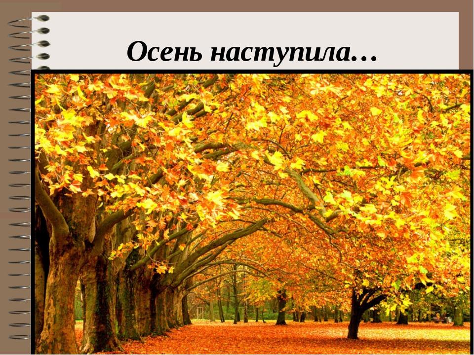 Осень наступила…