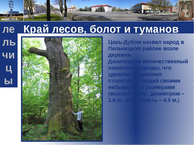 Край лесов, болот и туманов Царь-Дубомназвал народ в Лельчицком районе возле...