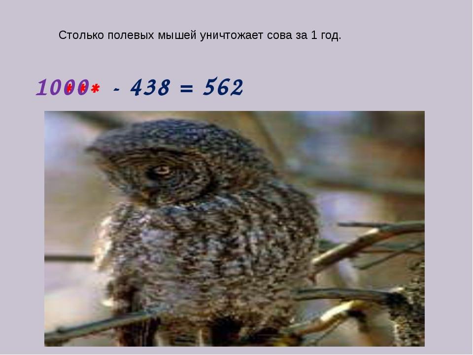 - 438 = 562 *** 1000 Столько полевых мышей уничтожает сова за 1 год.