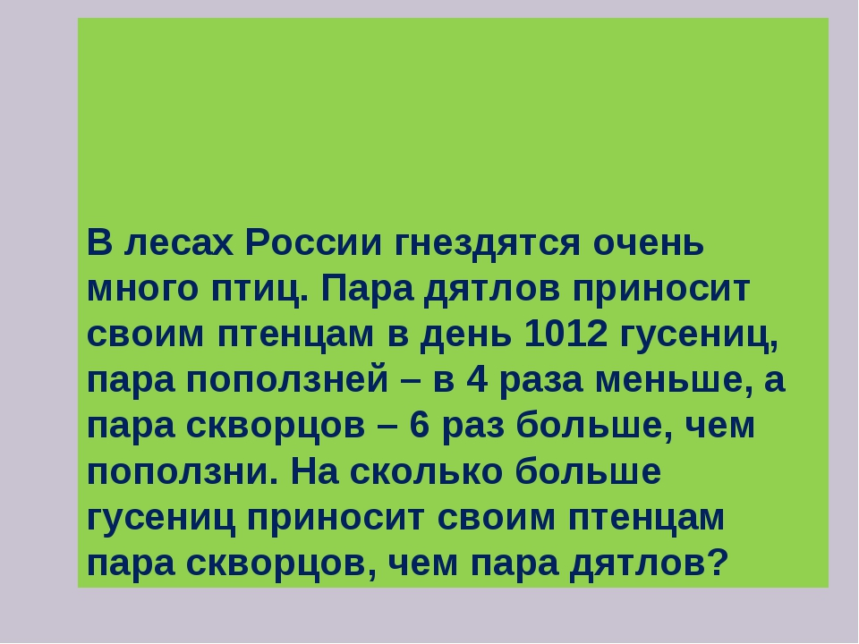В лесах России гнездятся очень много птиц. Пара дятлов приносит своим птенца...