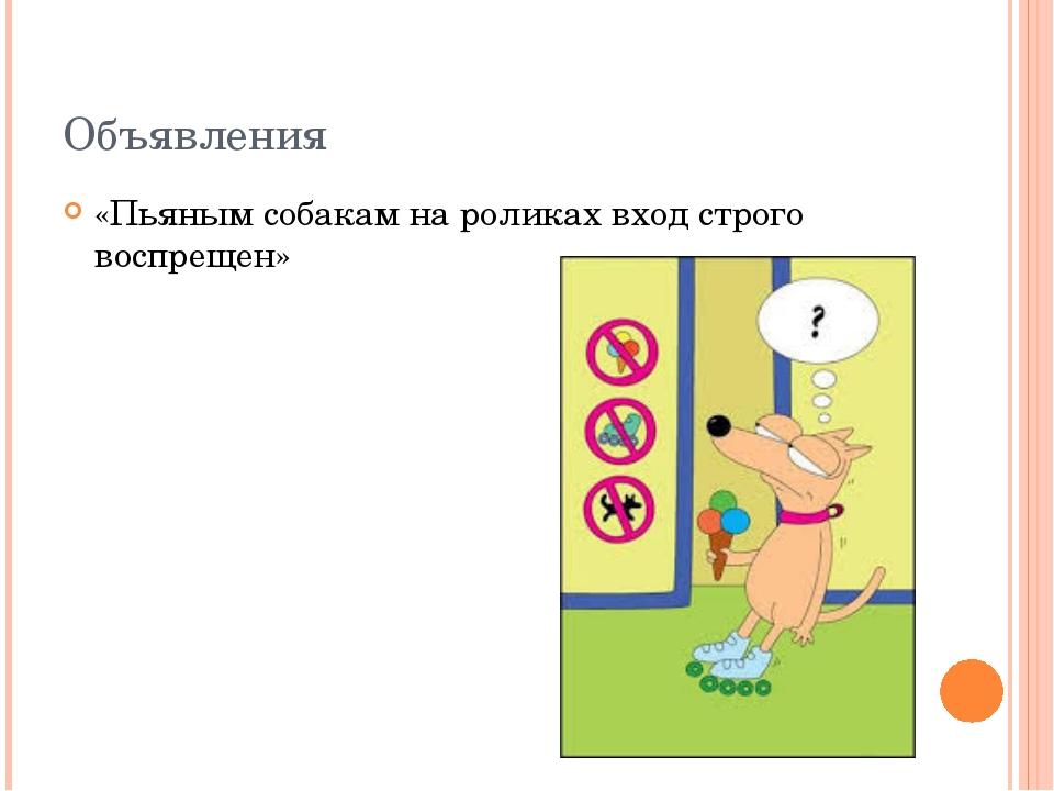 Объявления «Пьяным собакам на роликах вход строго воспрещен»