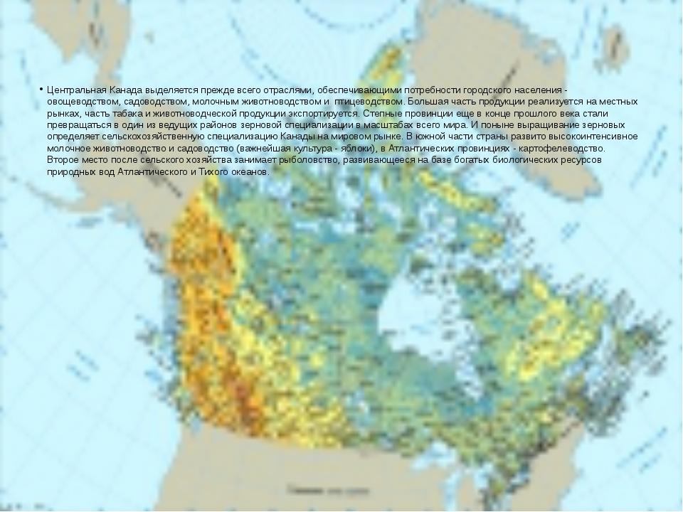 Центральная Канада выделяется прежде всего отраслями, обеспечивающими потребн...