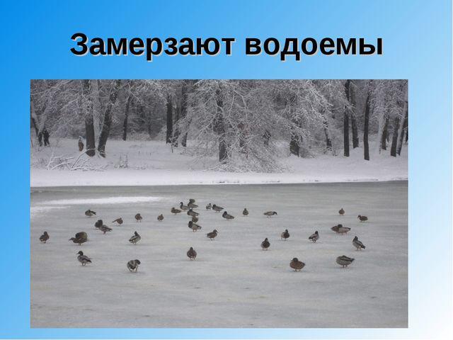 Замерзают водоемы