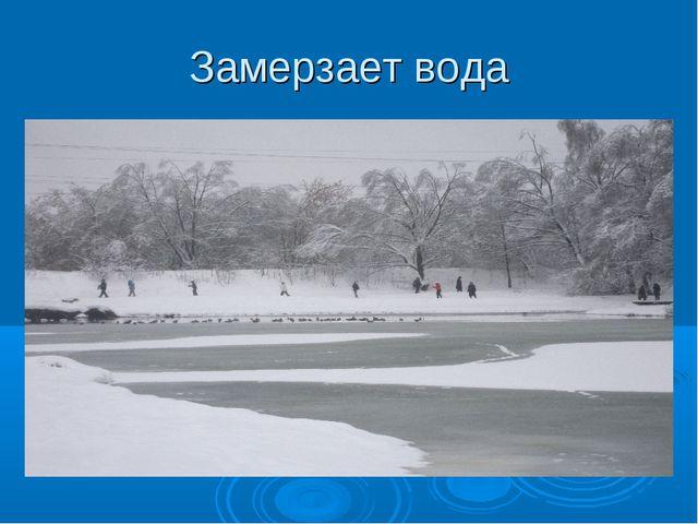 Замерзает вода