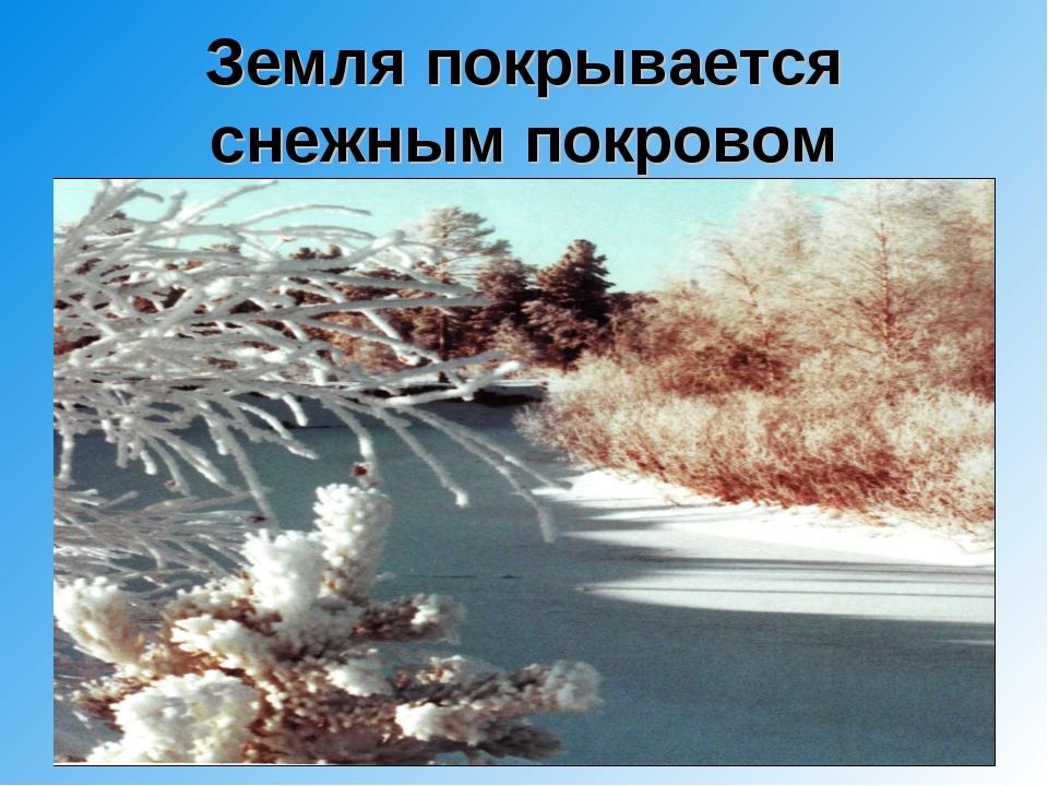 Земля покрывается снежным покровом