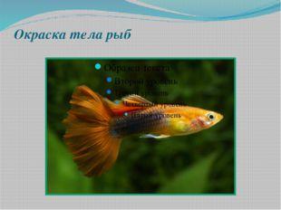Окраска тела рыб