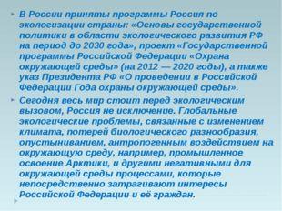 В России приняты программы Россия по экологизации страны: «Основы государстве
