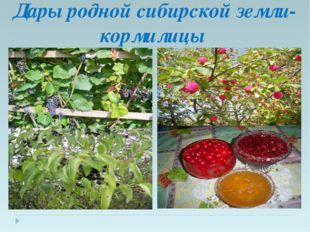 Дары родной сибирской земли-кормилицы