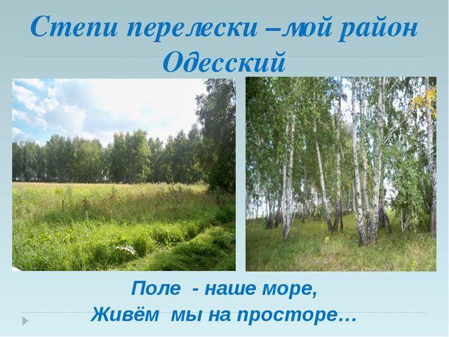 Степи перелески –мой район Одесский Поле - наше море, Живём мы на просторе…