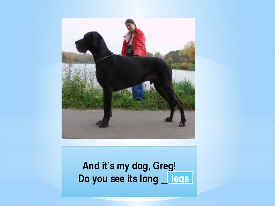 And it's my dog, Greg! Do you see its long ____ legs