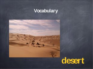 Vocabulary desert