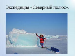 Экспедиция «Северный полюс».