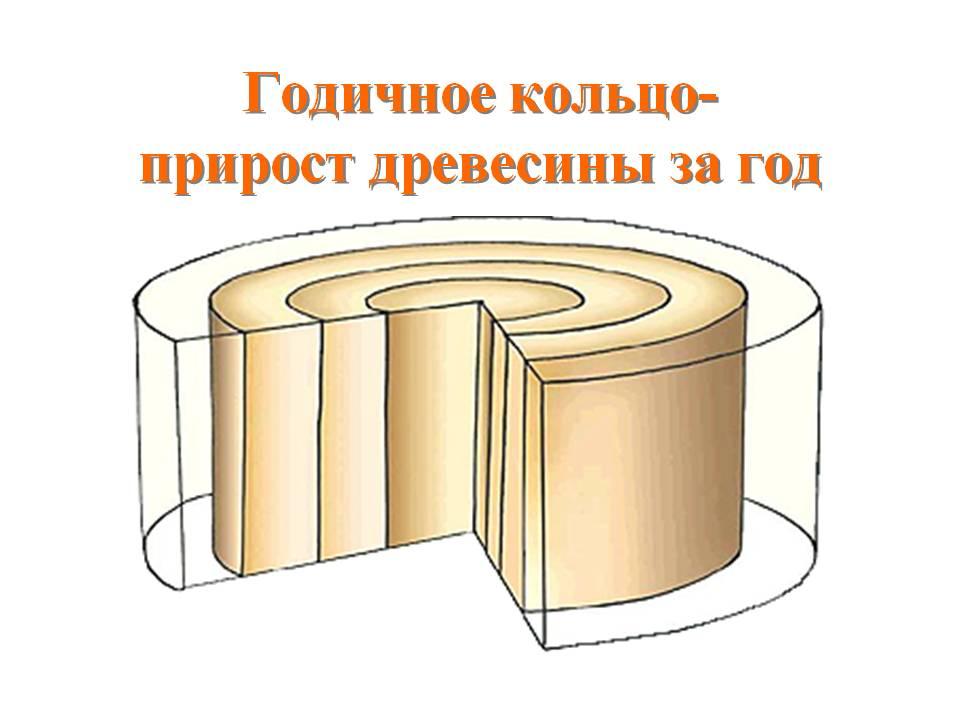 hello_html_70b2131d.jpg