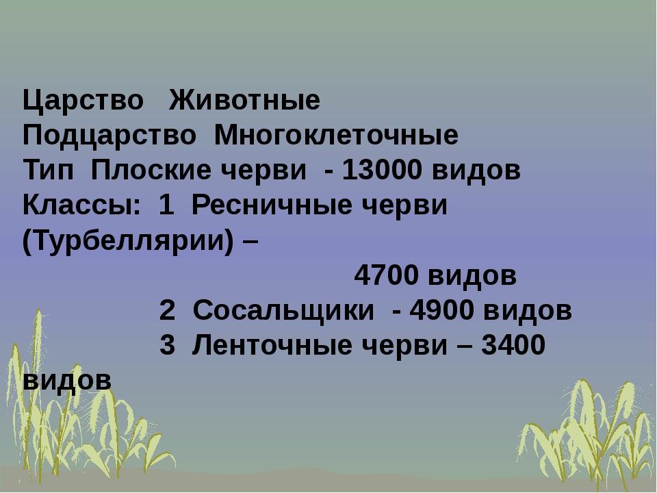 Царство Животные Подцарство Многоклеточные Тип Плоские черви - 13000 видов К...