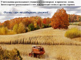 Осень - время собирать урожай Учительница рассказывает учащимся о поговорках