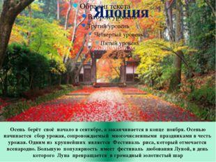 Осень берёт своё начало в сентябре, а заканчивается в конце ноября. Осенью на