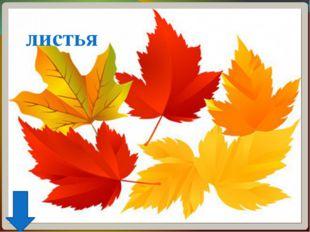 В конце урока для разминки и для практики русского языка учащиеся поют песню-