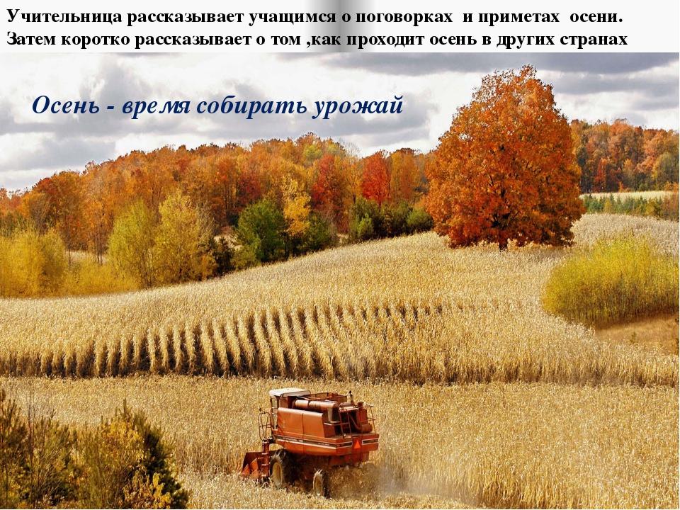 Осень - время собирать урожай Учительница рассказывает учащимся о поговорках...