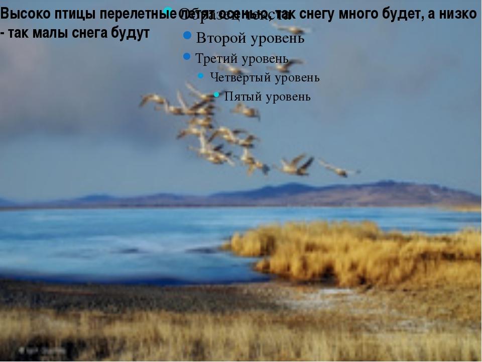 Высоко птицы перелетные летят осенью, так снегу много будет, а низко - так ма...