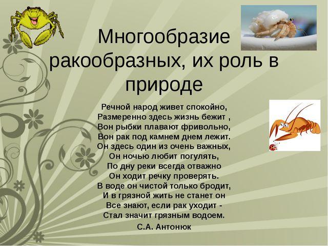 Многообразие ракообразных, их роль в природе Речной народ живет спокойно, Раз...